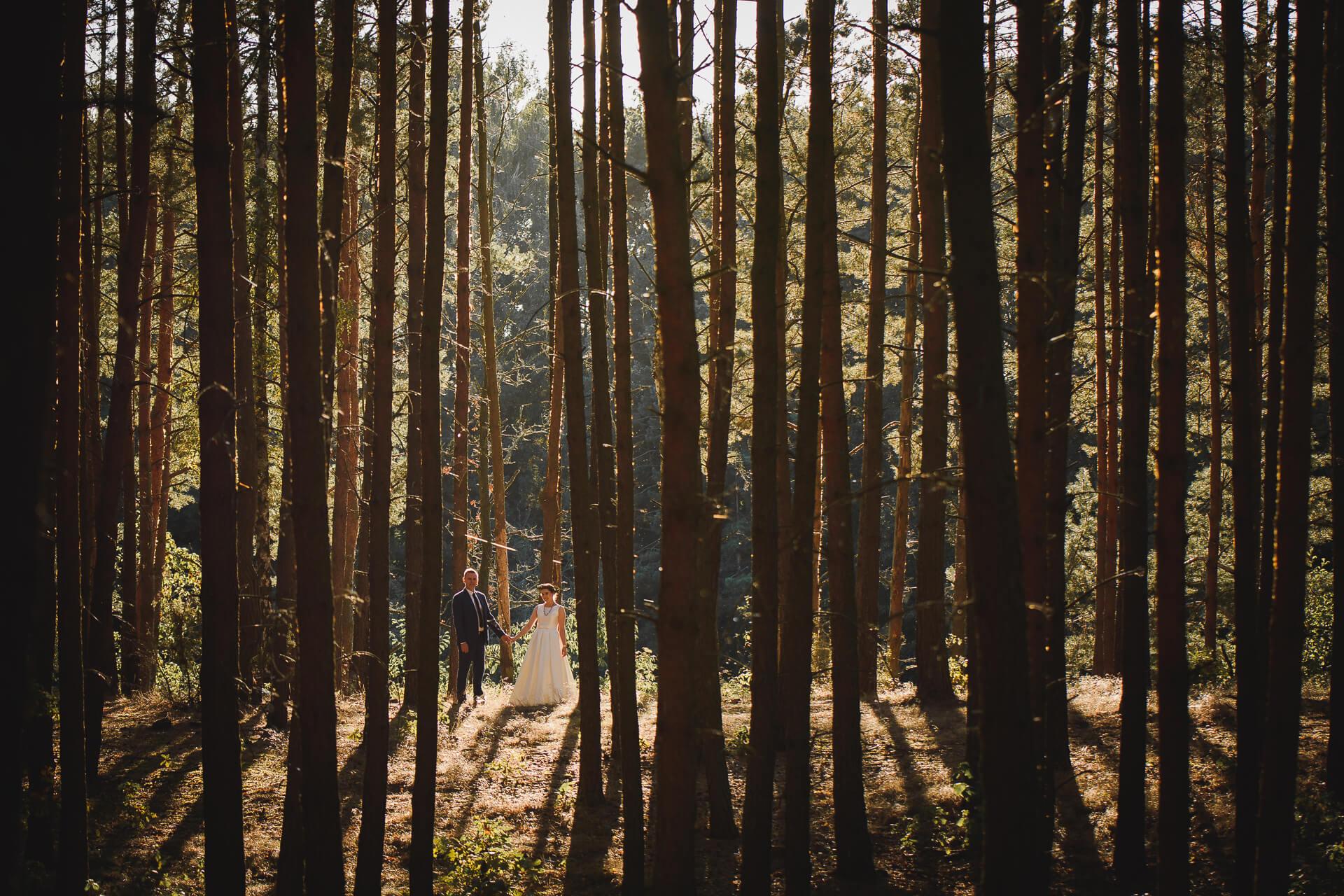 Sesja ślubna w lesie nad zalewem koronowskim